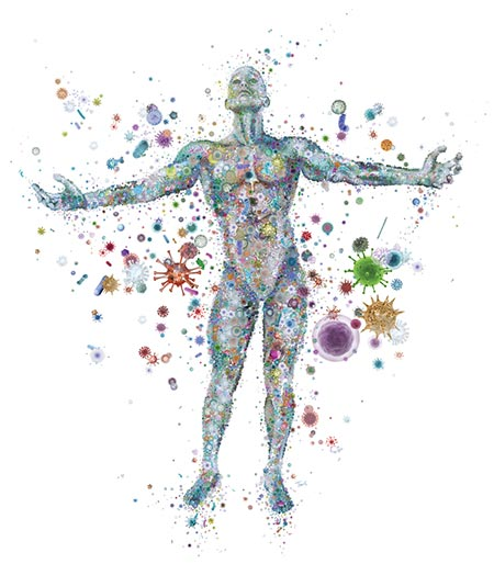 Our microbiota inhabit all parts of our body