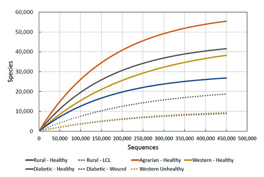 西洋文明と肌の健康のグラフ