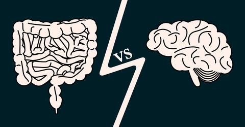 腸は感情に影響を与え、脳は腸をコントロールしています